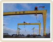 Samson and Golliath Cranes Belfast